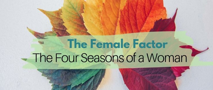 The Female Factor Menstrual Cycle