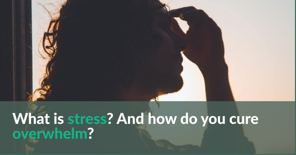 What is stress? And how do you cure overwhelm?